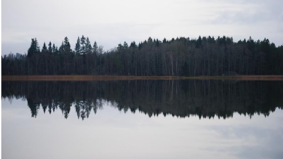 Glass-like lake