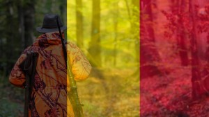 Belgian Hunting Permit