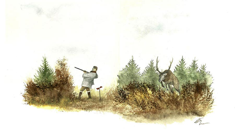 Painting by Thibault de Witte – Hunting illustrator
